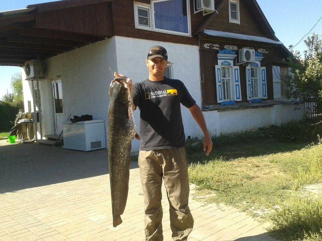 Авито охота и рыбалка тверь