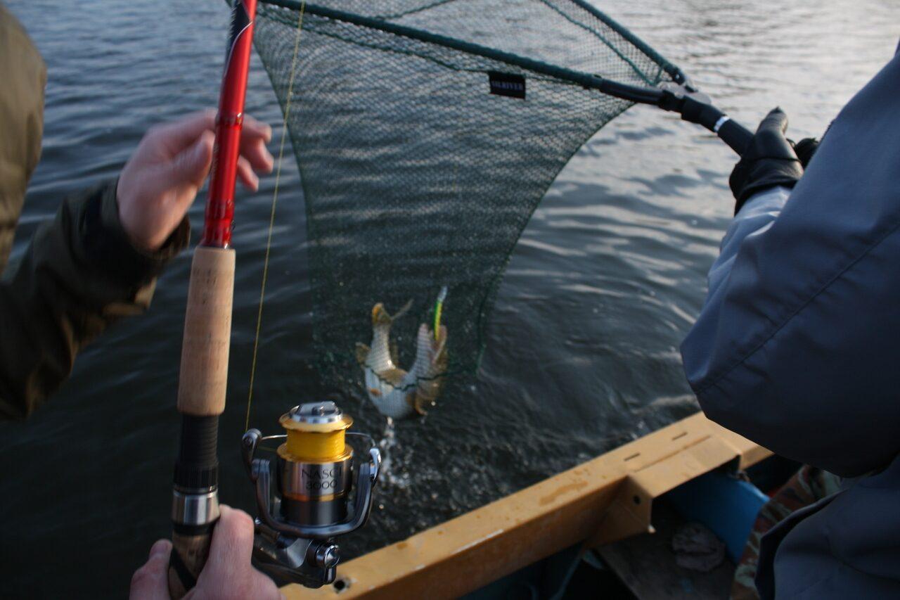 рыбалка троллинг видео на реке или